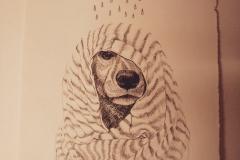 illustratie - inkt op papier