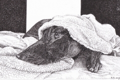 Pentekening Noor - 25 x 16 cm.
