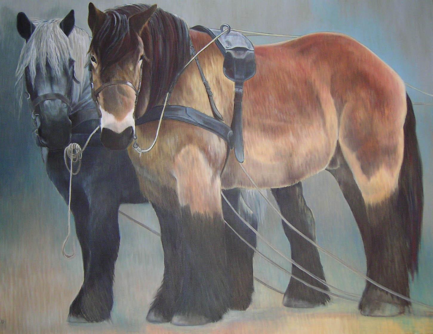 Paardenkracht, 90 x 120 cm, olieverf - kunstuitleen