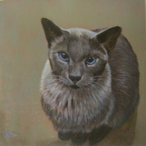 Cat - olieverf op  paneel - 13 x 13 cm.