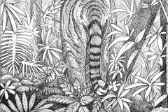 Illustratie uit het boek Bender - Lian Kandelaar - KNNV Uitgeverij.