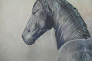 paard en portret
