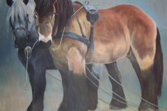Paardenkracht, 90 x 120 cm, olieverf - kunstuitleen Veenstra