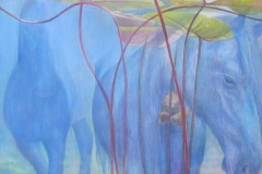 Waterpaarden - Olieverf op doek - 70 x 70 cm. 2014